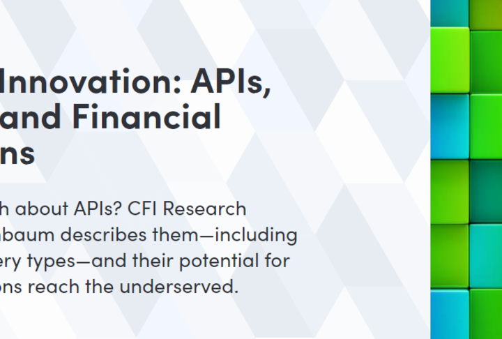Building Innovation: APIs, Fintechs and Financial Institutions by Accion