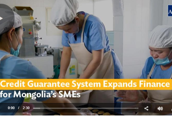 Credit Guarantee System Expands Finance for Mongolia's SMEs