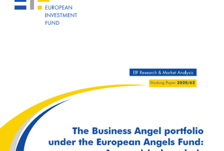 The Business Angel portfolio under the European Angels Fund: An empirical analysis