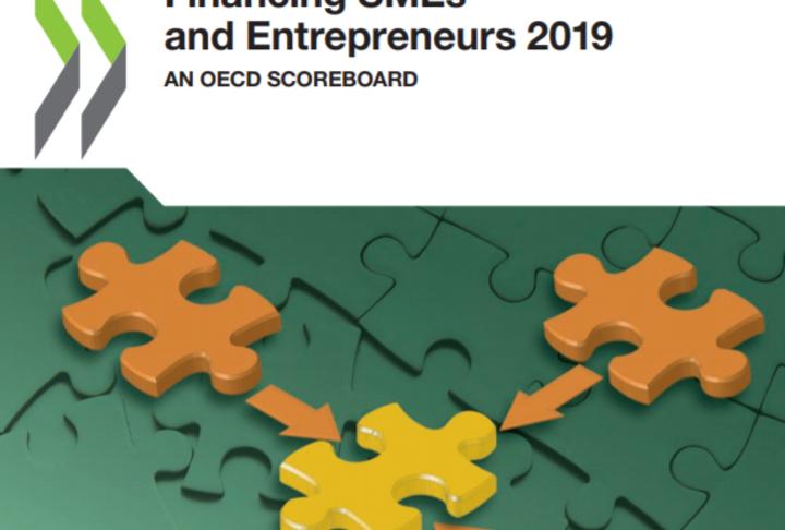 Financing SMEs and Entrepreneurs 2019. An OECD Scoreboard