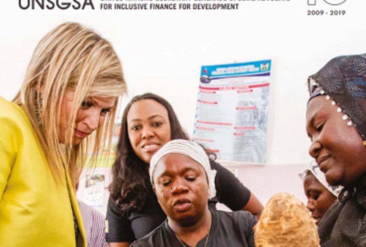UNSGSA Annual Report 2019 Cover