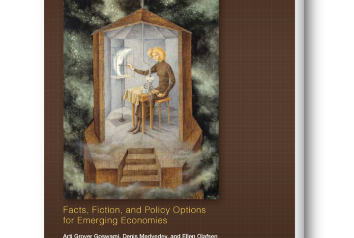 High-Growth Firms: Facts, Fiction, and Policy Options for Emerging Economies