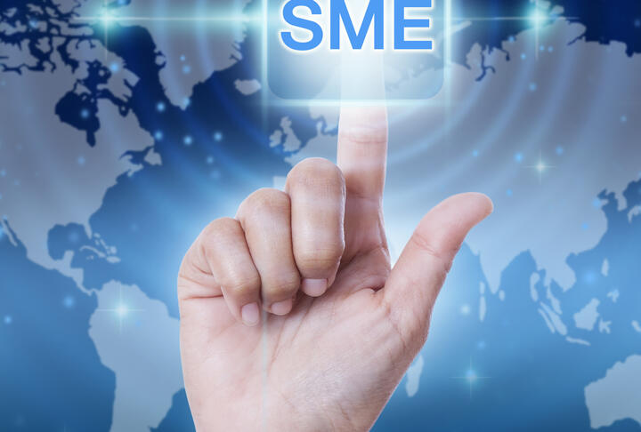 Access to Finance for MSMEs in Bosnia and Herzegovina with a Focus on Gender