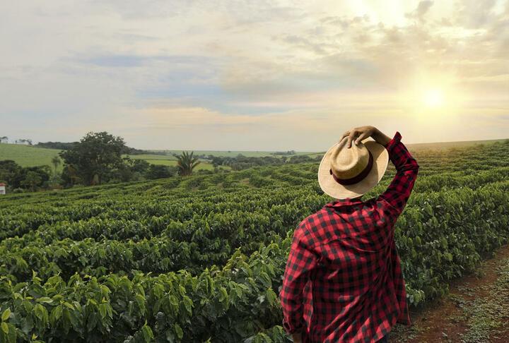 Webinar sólo para miembros  - Financiamiento Verde en Latinoamérica: Oportunidades de Negocio y Retos para la Banca