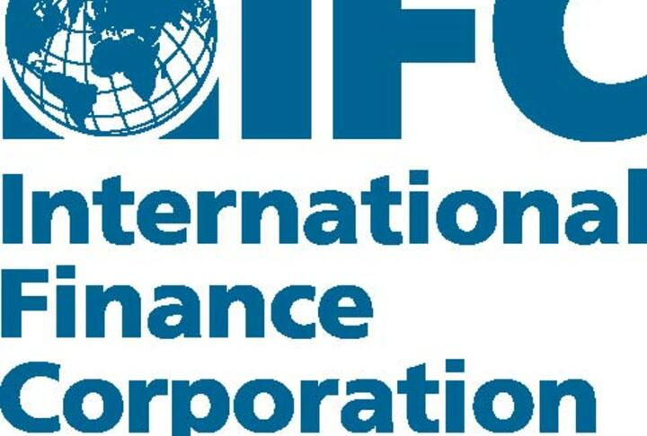 IFC Financing to Micro, Small and Medium Enterprises - FY2013
