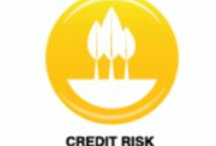 Agricultural Lending Tools:Credit Risk Assessment