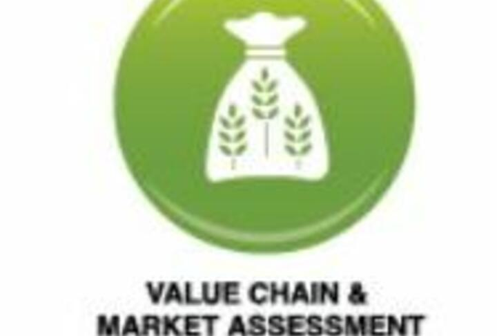 Agricultural Lending Tools: Value Chain and Market Assessment