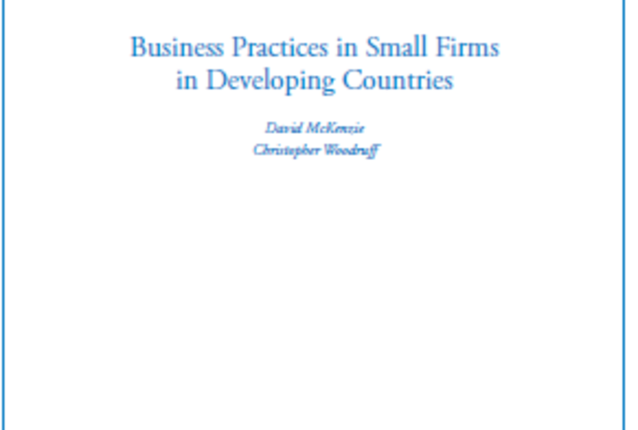 Business practices in small firms in developing countries