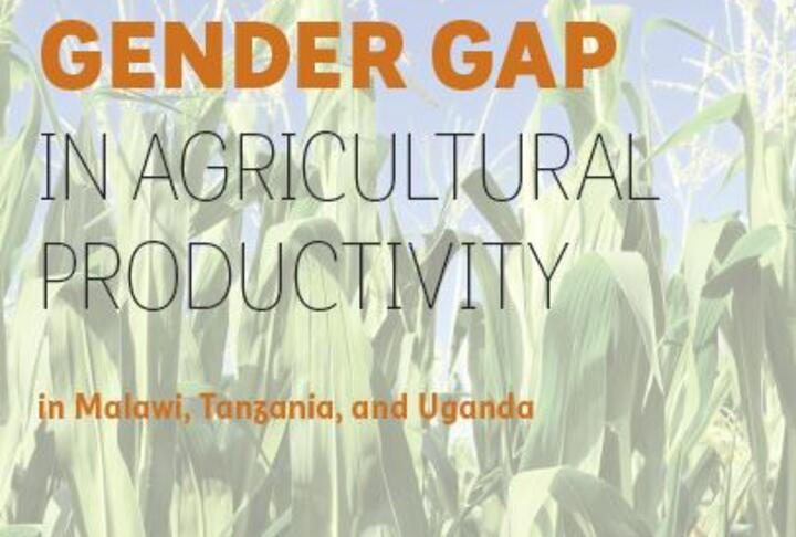The Cost of the Gender Gap in Agricultural Productivity in Malawi, Tanzania, and Uganda