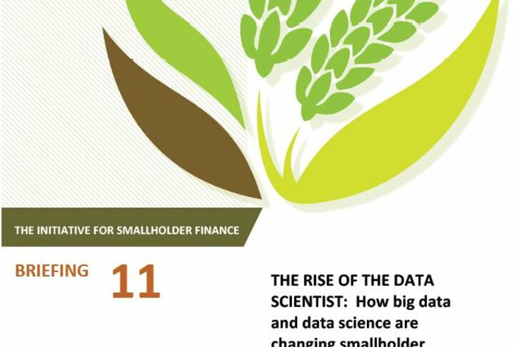 The Rise of the Data Scientist: How big data and data science are changing smallholder finance