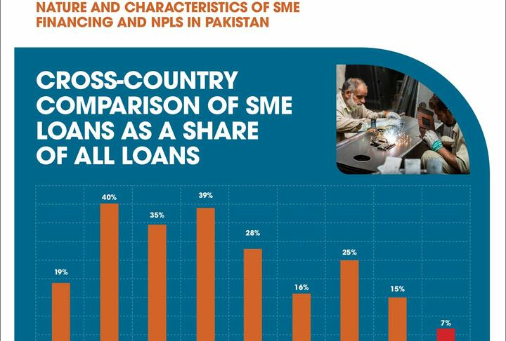 Nature and Characteristics of SME Financing and NPLs in Pakistan