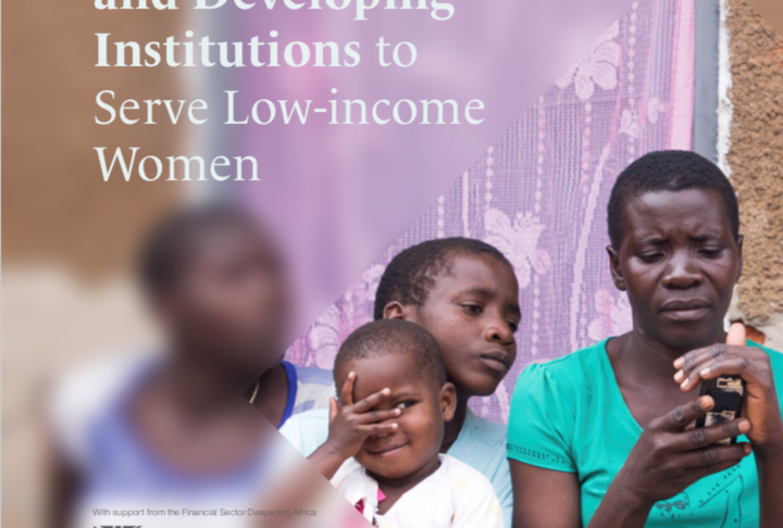 "Case Study: ""Designing Products and Developing Institutions to Serve Low-income Women"" in Nigeria, Tanzania and Malawi"