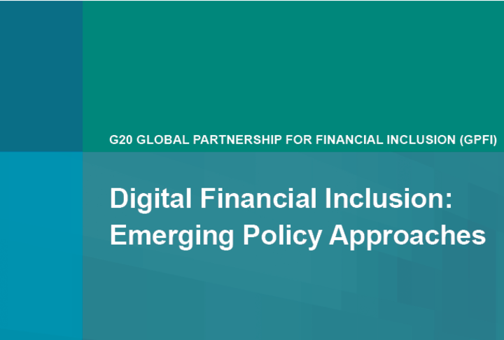 Digital Financial Inclusion: Emerging Policy Approaches