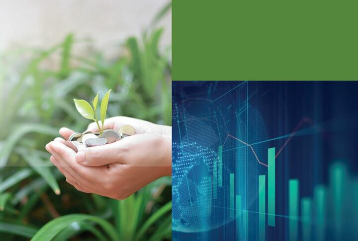 Financing for SMEs in Sustainable Global Value Chains
