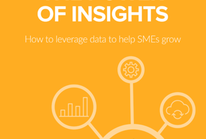 White Paper: How to Leverage Data to Help SMES Grow