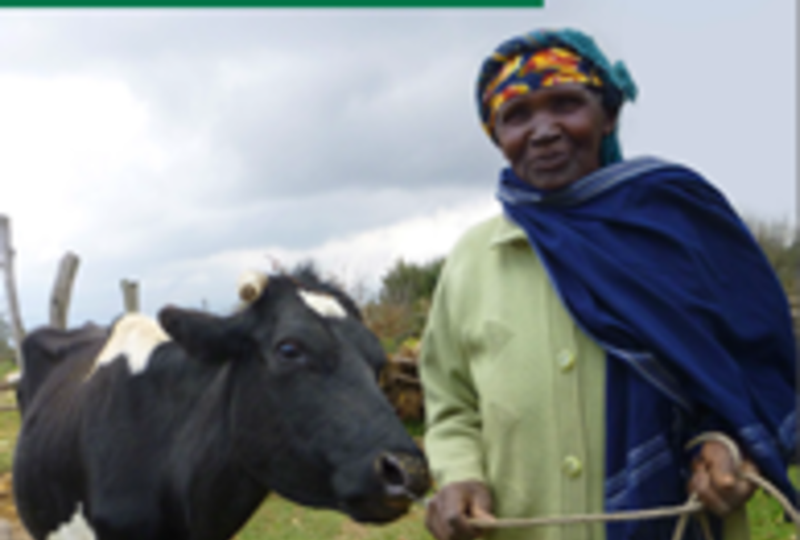 Kilimo Booster: Agricultural Loan for Kenya's Smallholder Farmers
