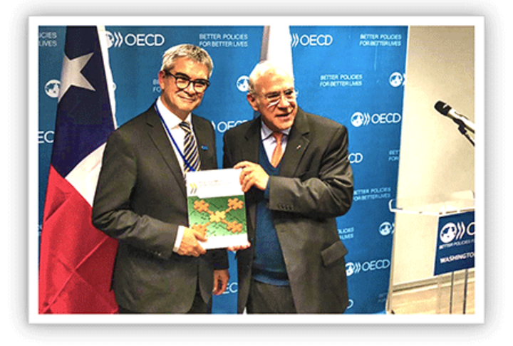 OECD Report: Financing SMEs and Entrepreneurs 2019