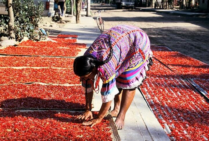 World Bank Project Expands Access to Finance for Women in Rural Mexico