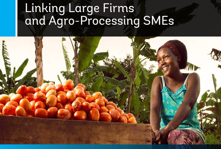 Partnership for Growth: Linking Large Firms and Agro-Processing SMEs