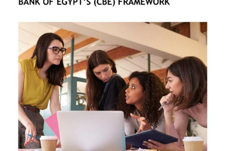 Integrating Gender and Women's Financial Inclusion into the Central Bank of Egypt's (CBE) Framework