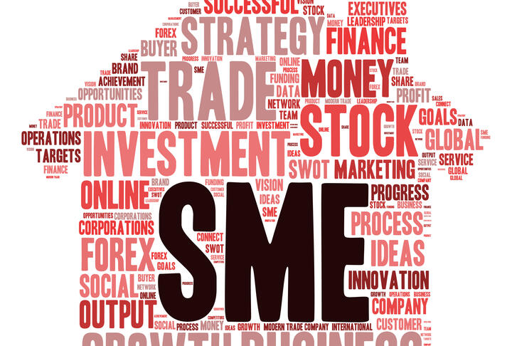 SME Action Plan on Financial Infrastructure