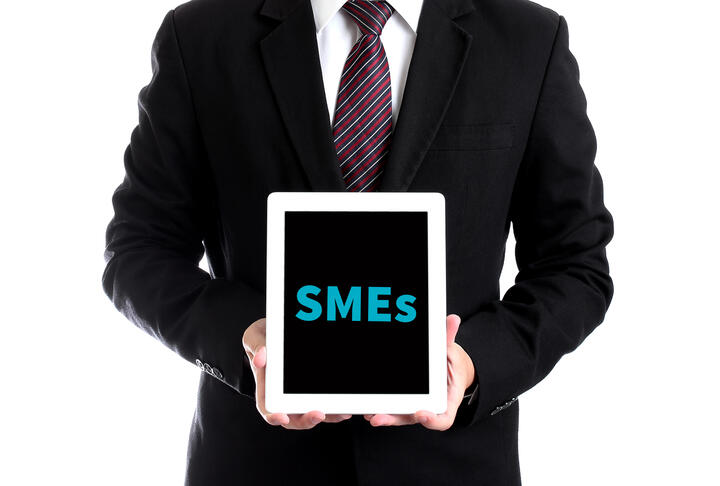 Financing Patterns of European SMEs Revisited : An Updated Empirical Taxonomy and Determinants of SME Financing Clusters