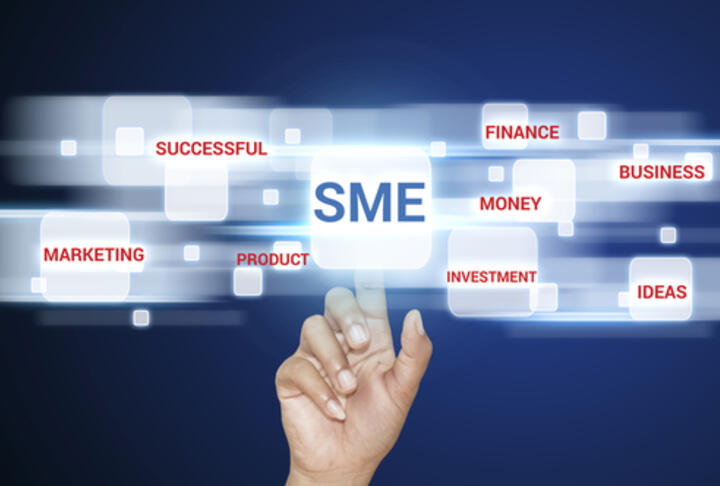 Small, Medium, Strong. Trends in SME Performance and Business Conditions