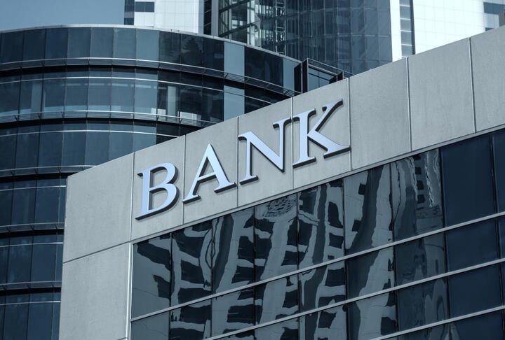 Bank Ownership: Trends and Implications