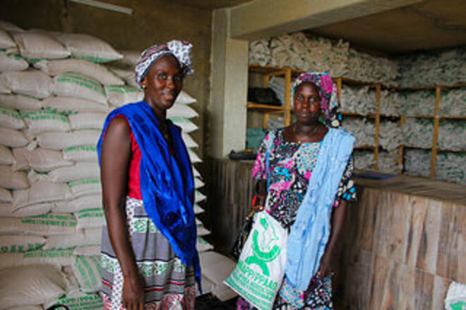 Greenfield microfinance – a business model for advancing financial inclusion in Sub-Saharan Africa?