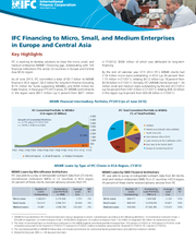 IFC Financing to Micro, Small, and Medium Enterprises in Europe and Central Asia