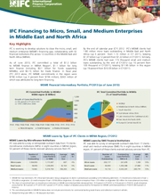 IFC Financing to Micro, Small, and Medium Enterprises in Middle East and North Africa