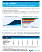 IFC Financing to Micro, Small and Medium Enterprises - Globally