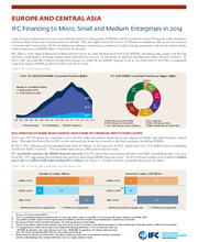 IFC Financing to Micro, Small, and Medium Enterprises in Europe and Central Asia (ECA)